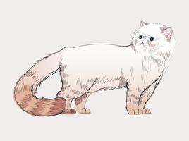 Estilo de desenho de ilustração de gato