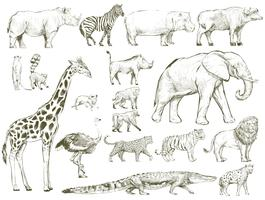 Style de dessin d'illustration de la collection de faune