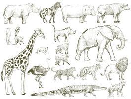 Illustration ritning stil av djurliv samling