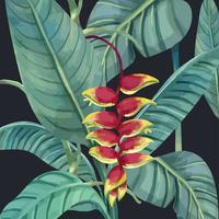 Flor de garra de langosta dibujada a mano