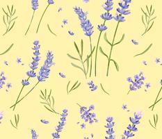 Mão desenhada padrão de flor de lavanda