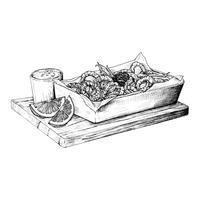 Calamari lula frita mão desenhada