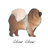 Style de dessin du chien