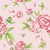 Modello di peonia rosa disegnato a mano