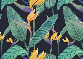Hand drawn bird of paradise pattern