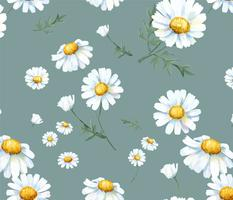 Hand drawn white common daisy pattern