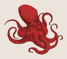 Illustration ritning stil av bläckfisk