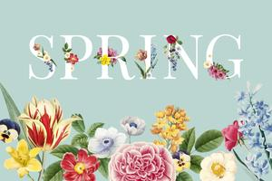 Spring floral background illustration