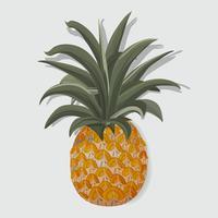 Ilustração em vetor de frutas tropicais abacaxi fresco