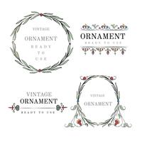 Vintage bloeien ornament illustratie set