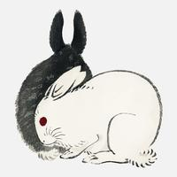 Black and white rabbits by K?no Bairei (1844-1895). Digitally enhanced from our own original 1913 edition of Bairei Gakan.