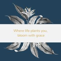 Tropical plant banner illustration