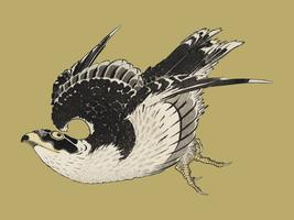 The ukiyo-e illustration, Hawk by Katsushika Hokusai (1849), a portrait of a flying hawk in the sky. Digitally enhanced from our own antique wood block print. Digitally enhanced by rawpixel.