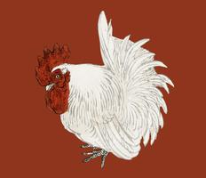 Japanese Bantam by K?no Bairei (1844-1895). Digitally enhanced from our own original 1913 edition of Bairei Gakan.