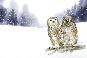 Pair of owls in a winter wonderland watercolor style vector