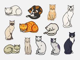 Set von Katzen. Elemente aus dem öffentlichen Bereich, geändert durch rawpixel.