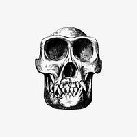 Cranio in stile vintage