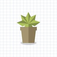 Spiky plant in a pot vector