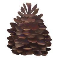 Illustratie van pinecone die op witte achtergrond wordt geïsoleerd
