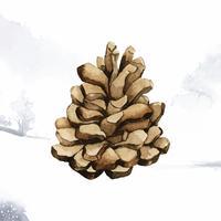 Pomme de pin peint par vecteur aquarelle