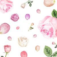 Ilustración de dibujo flor rosa blanca