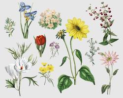 Vintage Blume gesetzt