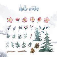 Hej Vinter växter och blommor målade av vattenfärg vektor