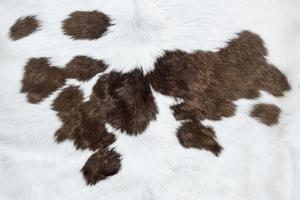 White cow hide with brown patches background