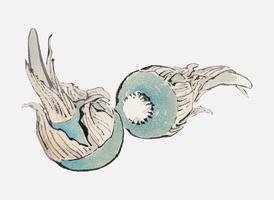 Hoja de flecha de tres hojas de K? No Bairei (1844-1895). Mejorado digitalmente desde nuestra propia edición original de Bairei Gakan en 1913.