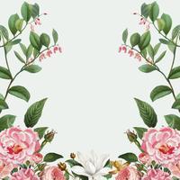Marco de peonía rosa
