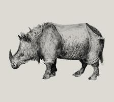 Rinoceronte en estilo vintage