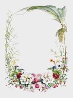 Titel sida från Illustrationer av Himalayan växter (1855) av WH (Walter Hood) Fitch (1817-1892). Digitalt förbättrad av rawpixel.