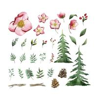 Aquarel set winterbloemen en bladeren vector