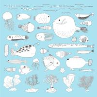 Vector of underwater creatures