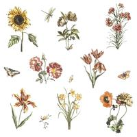 Weinleseillustration von verschiedenen Blumen