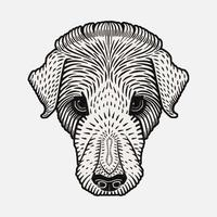 Dog's head (1920) by Julie de Graag (1877-1924). Original from the Rijks Museum. Digitally enhanced by rawpixel.