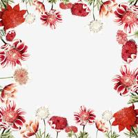 Hand drawn red anemone flower frame with design space