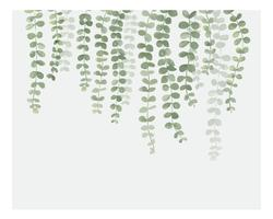 Illustration av hängande växt isolerad på vit bakgrund