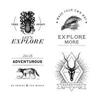 Raccolta di vettori di design logo avventura