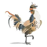 Illustration vintage d'un coq