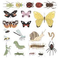 Vettore di diversi tipi di insetti