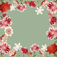 Hand gezeichneter roter Anemonenblumenrahmen mit Designraum