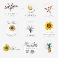 Fleurs avec des citations