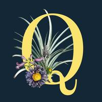 Letter Q with blossoms
