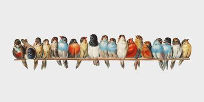 A Perch of Birds (1880) by Hector Giacomelli (1822-1904). Digitally enhanced by rawpixel.