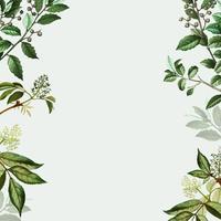Green botanical frame