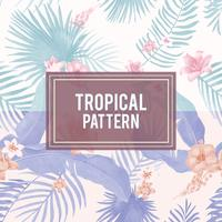 Tropical foliage illustration
