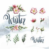 Akvarell uppsättning vinterblommor och löv vektor