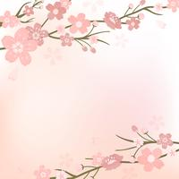 Cherry blossom background illustration