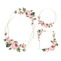 Quadros de rosas-de-rosa em branco de mão desenhada no conjunto de vetor de fundo branco